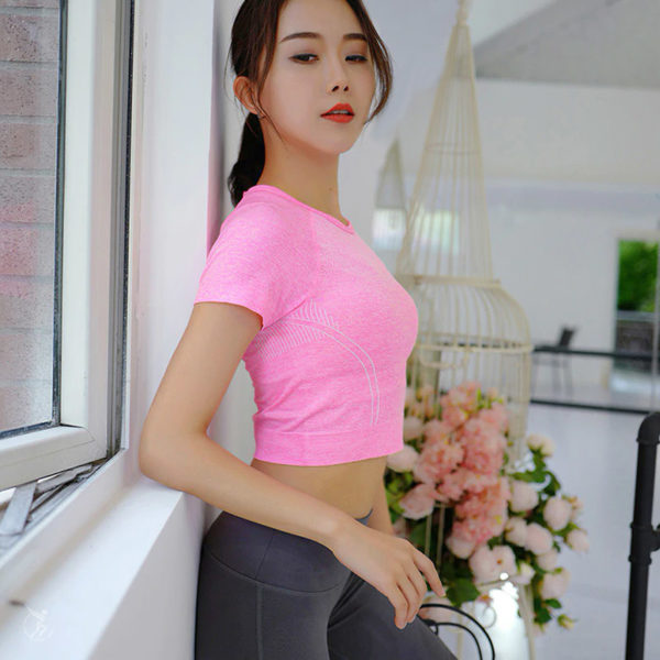 Flex Seamless Crop Top